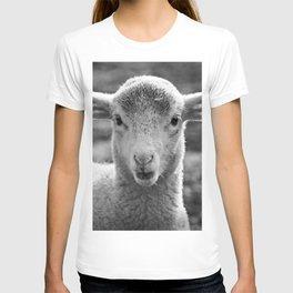 Lamb's portrait T-shirt