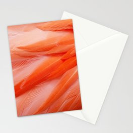 Flamingo Feathers Stationery Cards