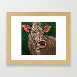 Brown Swiss Cow Framed Art Print