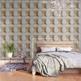 Cheetah - Colorful Wallpaper