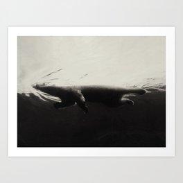 A Captive Wild, 1 of 3 Art Print