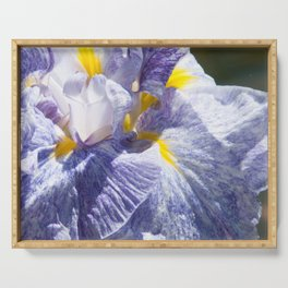 The love of the Iris by Teresa Thompson Serving Tray