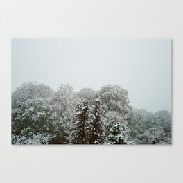 Snowfall in November. Canvas Print