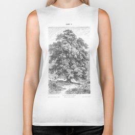 Linden Tree Print from 1800's Encyclopedia Biker Tank