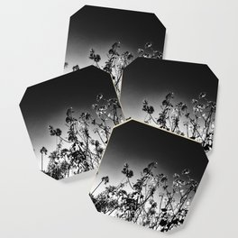 Nature in The City Coaster