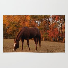 Horse Fall Days of Grazing Rug