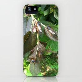 Cicadas by Jennifer Lynn iPhone Case