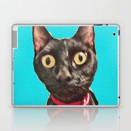 Kismet Kitty 2 Laptop & iPad Skin