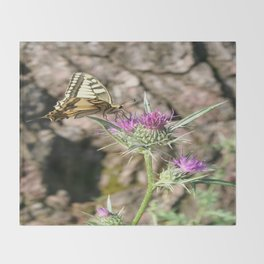Scarce Swallowtail Butterfly and Thistle Throw Blanket