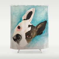 terrier Shower Curtains featuring Boston Terrier  by MeggaChurch