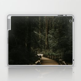 Trail Through Redwood Forest Laptop & iPad Skin