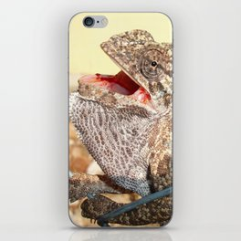 A Chameleon With Open Mouth iPhone Skin