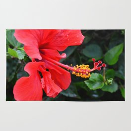 Red Hibiscus Flower Rug