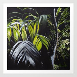 Sensitive Rainforest Art Print