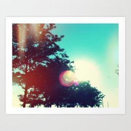Stunning Sunning Art Print