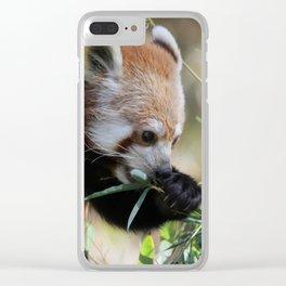 Red_Panda_2015_0308 Clear iPhone Case