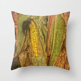The last ear of corn Throw Pillow