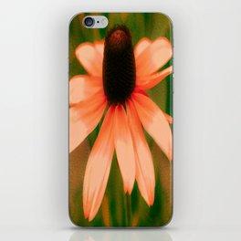 Vibrant Orange Coneflower iPhone Skin