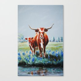 Longhorns and Bluebonnets Canvas Print