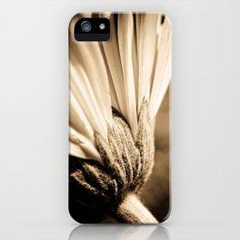 Sepia Gerbera iPhone Case