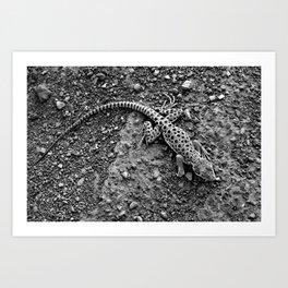 Leopard Gecko Art Prints | Society6