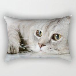Grey Tabby Cat Rectangular Pillow