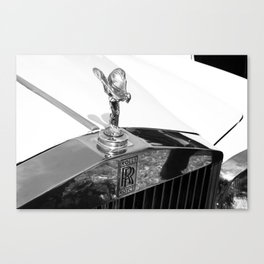 The Silver Lady  Canvas Print