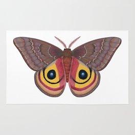 io moth (Automeris io) female specimen 1 Rug