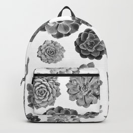 Agavoideae Backpack