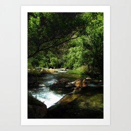 Utah River Art Print