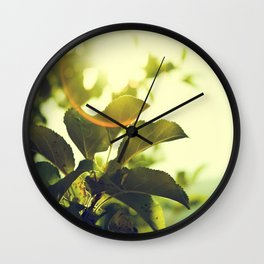 Morning Light Shining Through Branches Of Leaves Nature Photography Wall Clock