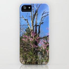 Hiking Views iPhone Case