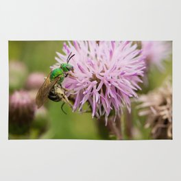 Green Bee on a Thistle Rug