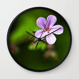 Geranium Robertianum Wall Clock