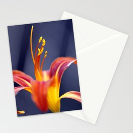 Red Yellow Blue Stationery Cards