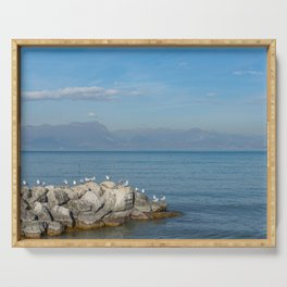 Seagulls on pebbles by the lake under a blue sky Serving Tray