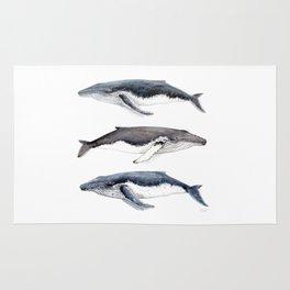 Humpback whales Rug