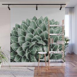 Succulent splendour Wall Mural