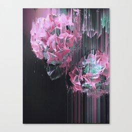 Glitch Pink Hydrangea Canvas Print