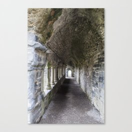 Lines and arches Canvas Print