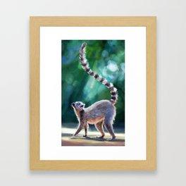 Look Lemur Framed Art Print