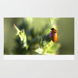 Red Bug Rug