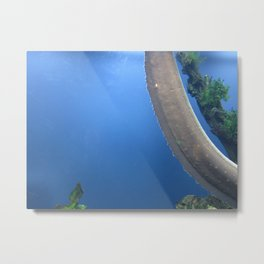 Electric Eel 1 Metal Print