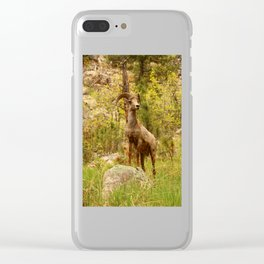His Teritory Clear iPhone Case