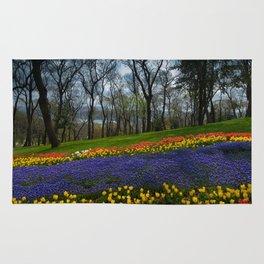 tulip park Rug