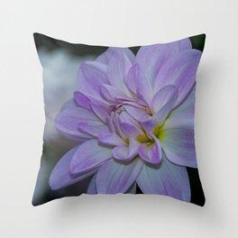 Porcelain Dahlia With Dewdrops Throw Pillow