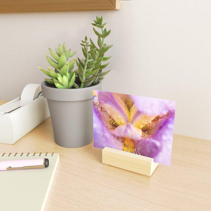 Bearded purple iris bloom pistil and petals closeup. Mini Art Print