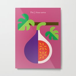 Fruit: Fig Metal Print