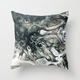 Expt. 3 Throw Pillow