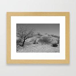 Fool On the Hill Framed Art Print